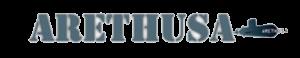 Vendor Logo of Arethusa VPN